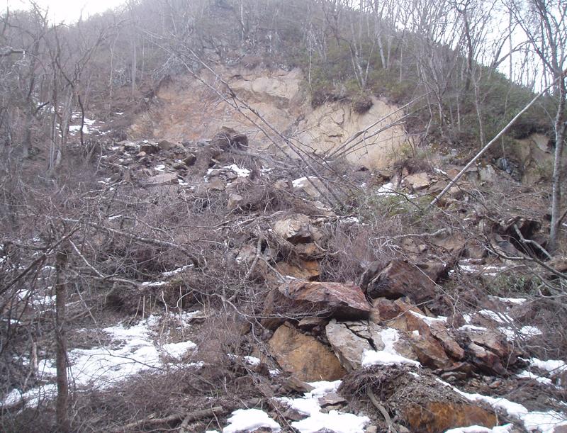 韮野地区 災害関連緊急治山工事 施工前2